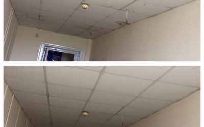 Suspended Ceiling in Dorchester, Dorset